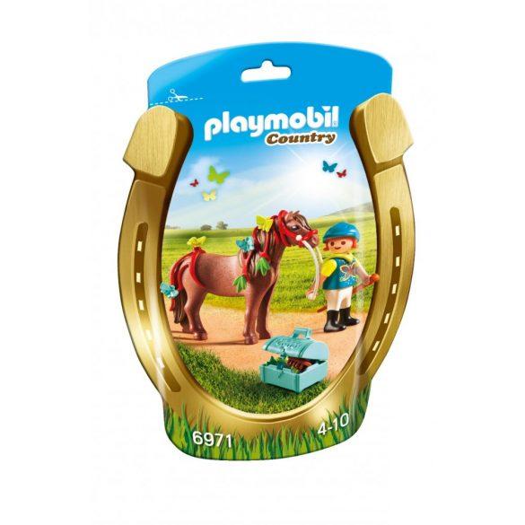 Playmobil 6971 Pilleszárny és lovasa