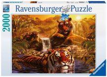 Ravensburger 16646 puzzle - Tigrisek (2000 db-os)