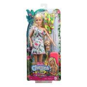 Barbie Az elveszett szülinap - Testvér baba (szõke hajjal)