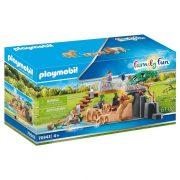 Playmobil Family Fun 70343 Oroszlánok szabad kifutón